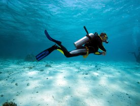 The Secret To Speeding Up Your PADI Certification