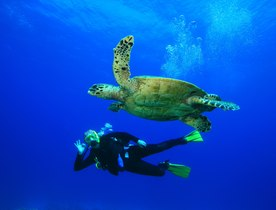 8 of the Best Diving Sites in the Eastern Caribbean
