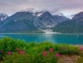 Alternative Summer Yacht Charters in Alaska