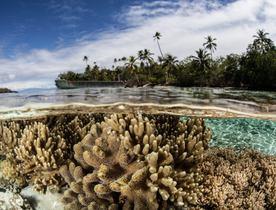Discover the Solomon Islands Aboard Superyacht 'De Lisle III'