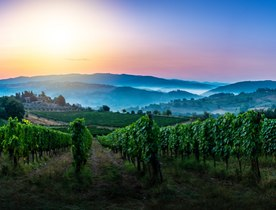 Six of the Best Wine Regions to Visit by Superyacht