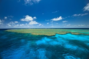 Discover Great Barrier Reef