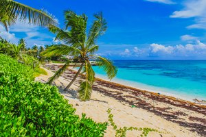 Discover Abacos Islands