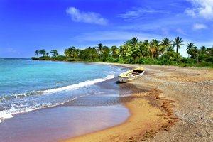 Discover Jamaica