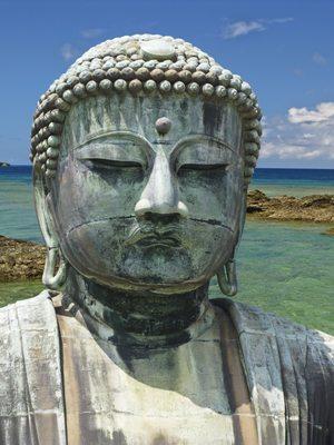 Discover Ryukyu Islands