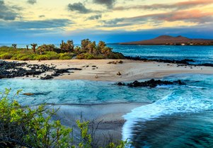 5 reasons why the Galapagos should be on your radar