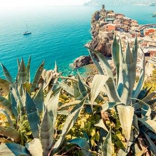 Italian Riviera photo 43
