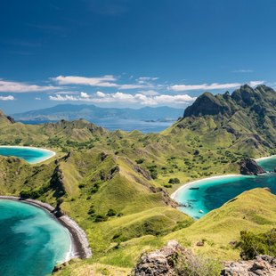 Komodo photo 7