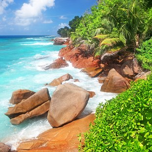 Sit Back and Admire the Beauty Of the Seychelles