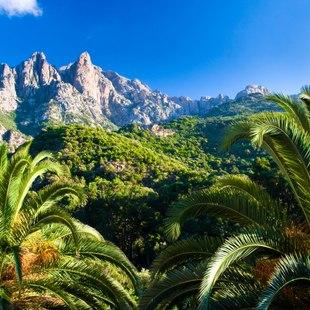The Mountains of Corsica