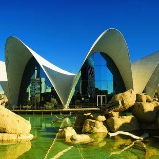 Spain photo 6