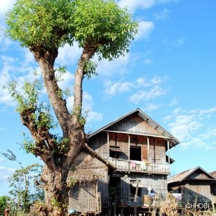 Typical Burmese village home