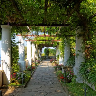 Find serenity in the public gardens of Capri