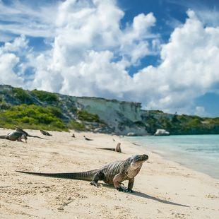 Mayaguana photo 2