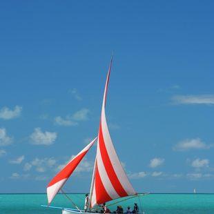 Indian Ocean photo 8