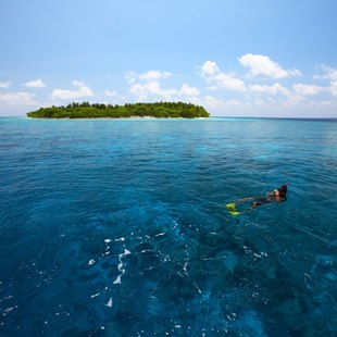Snorkel Near the Atolls of the Maldives