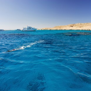 Egypt & Red Sea photo 19