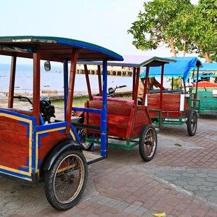 Indonesian vehicles