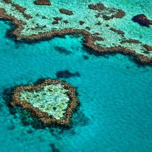 Great Barrier Reef photo 4