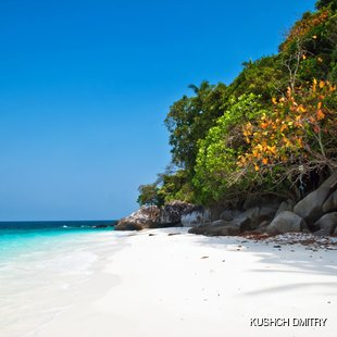 Tranquil uninhabited beach