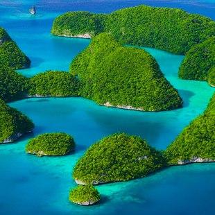 Palau Islands photo 24