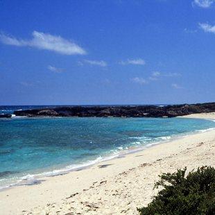 Bahamas photo 44