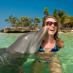 Make Dolphin Friends in Paradise
