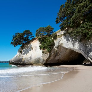 Travel to Cathedral Cove in the Coromandel Peninsula