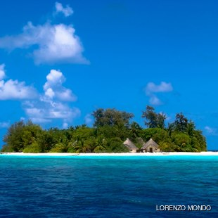 Absorb the Unique Culture of the Maldives Islands