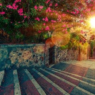 Stroll along the promenade