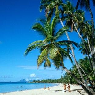 Touristic Martinique Beach