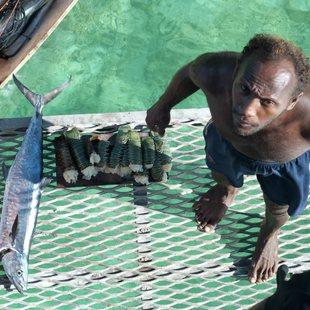 Local fisherman selling fresh fish in the  Solomon Islands