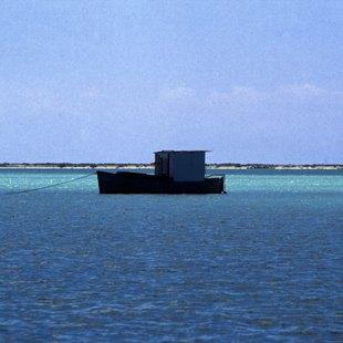 Bahamas photo 43