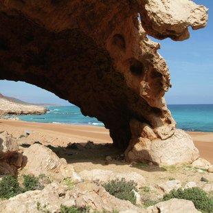 Socotra photo 27