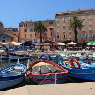 Multi-coloured Fishing Boats in the Old Port of Ajaccio