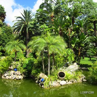 Get Lost in the Beauty of Monaco's Gardens