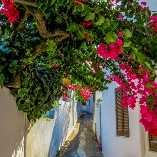 Aeolian Islands photo 17