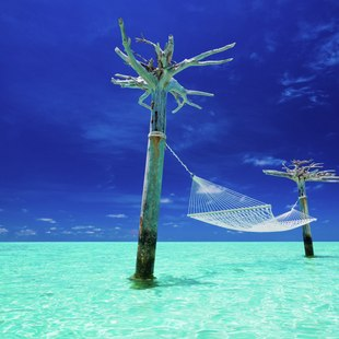 Tahiti photo 10