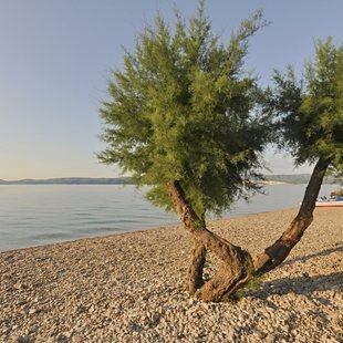 Enjoy Croatia's Enchanting Pebble Beaches