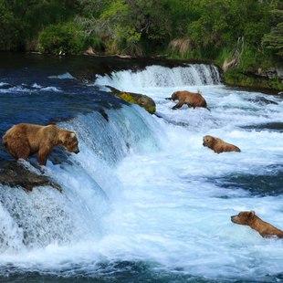 Alaska photo 7