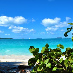 Idyllic Trunk Bay, St. John