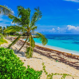 Abacos Islands photo 2