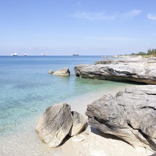 Grand Bahama Island photo 10