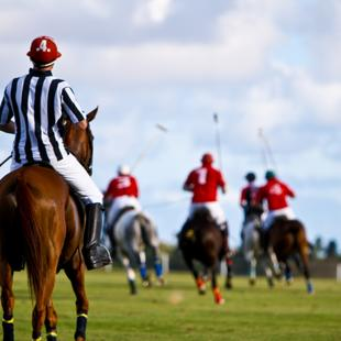 Enjoy the Polo in Barbados