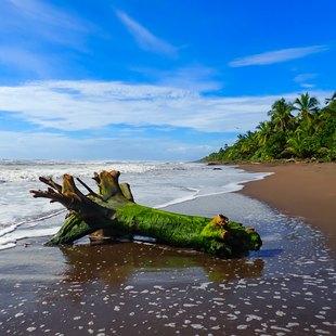 Costa Rica photo 7