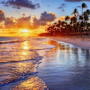 Grand Bahama Island photo 3