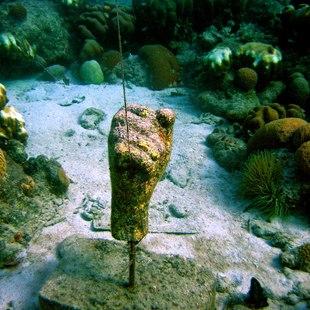 Curacao photo 12