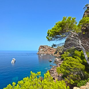 Mallorca photo 27