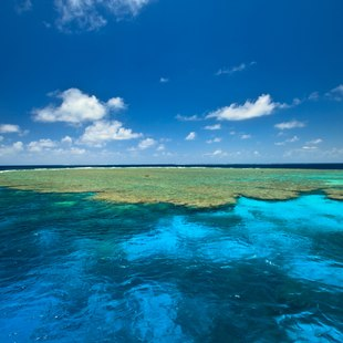Great Barrier Reef photo 2