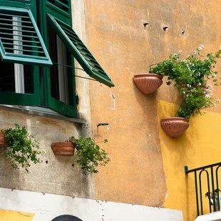 Italian Riviera photo 18